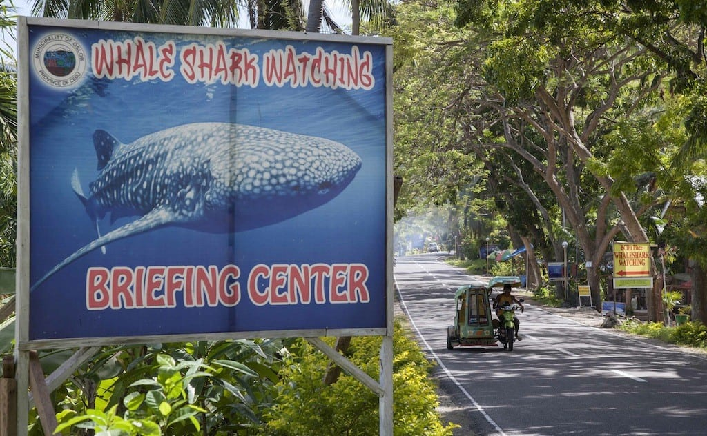 A sign advertising whale shark watching is pictured as a tricycle passes by in the village of Tan-awan, Oslob, in the southern Philippines island of Cebu February 27, 2013.