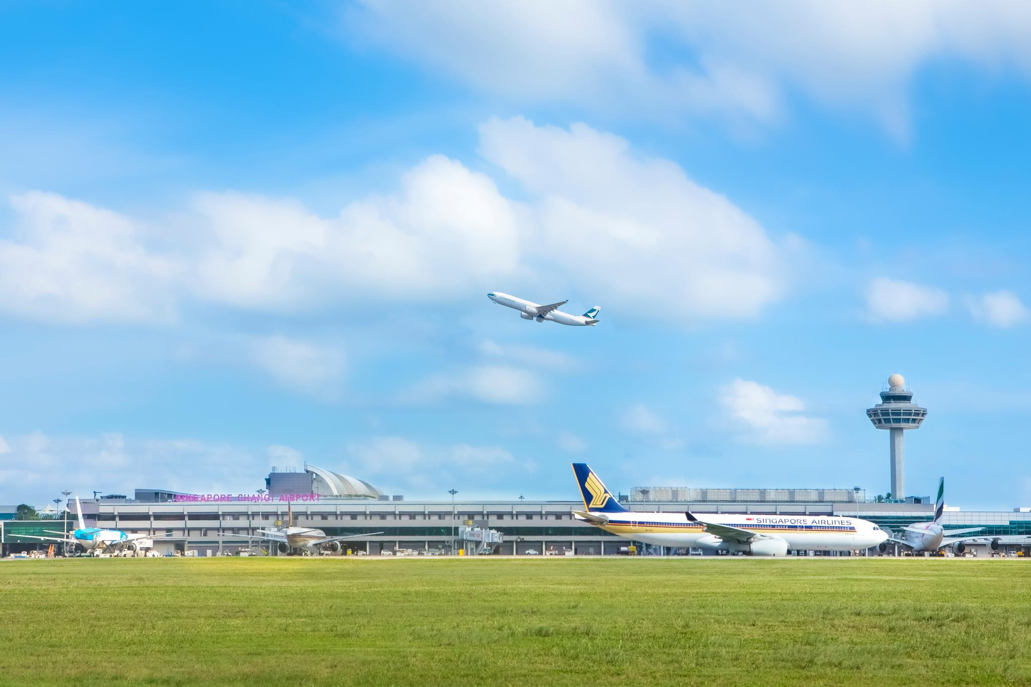 Blue apron singapore - Singapore Changi Airport To Lure More Flights By Cutting Airlines Fees Skift