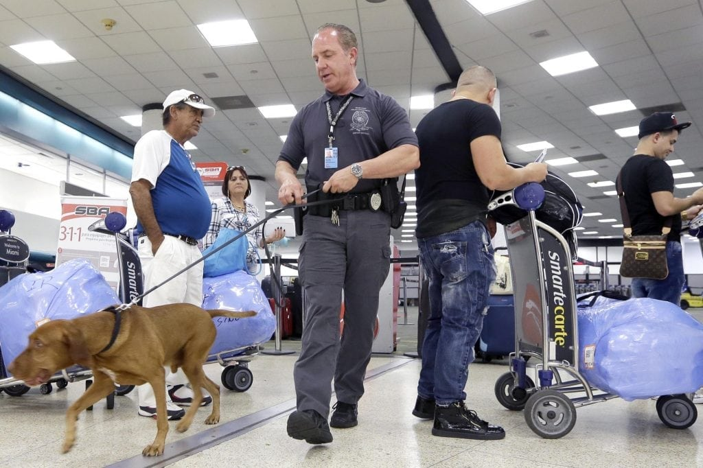 New airport and airline security measures could be here to stay long after the D.C. riots.