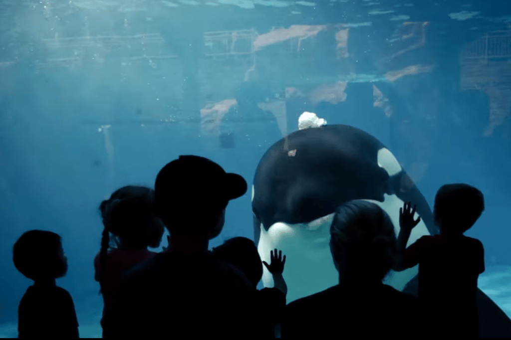 SeaWorld Announces New CEO and 5 Other Tourism Trends This Week