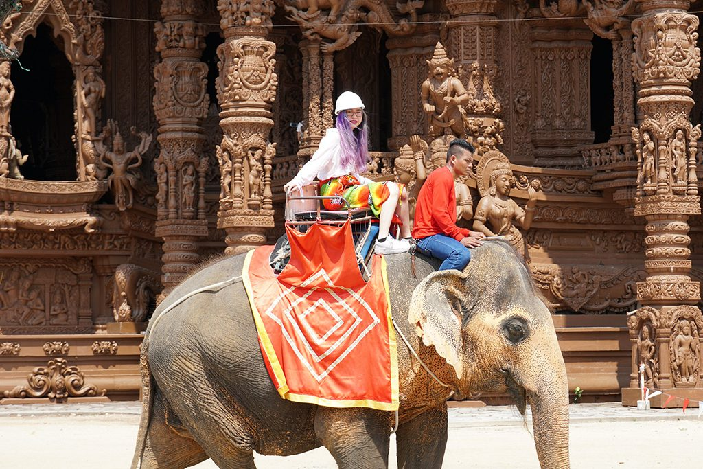 The Uncertain Future of Asia's Elephant Tourism Biz and 17 Other Top Tourism Stories This Week