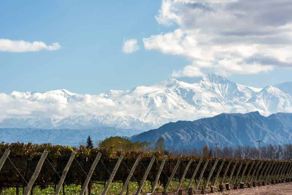 Pictured is a vineyard and the volcano Aconcagua Cordillera, part of the Andes mountain range, in the Argentine province of Mendoza.  Brazil-based travel company CVC Corp. closed a $77 million acquisition of Buenos Aires-based Almundo in November 2019.